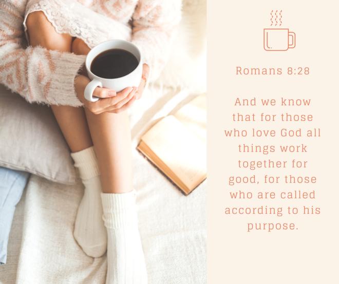 Romans 8.28